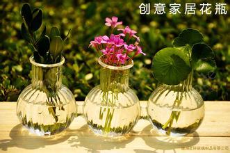 創意玻璃插花瓶擺件