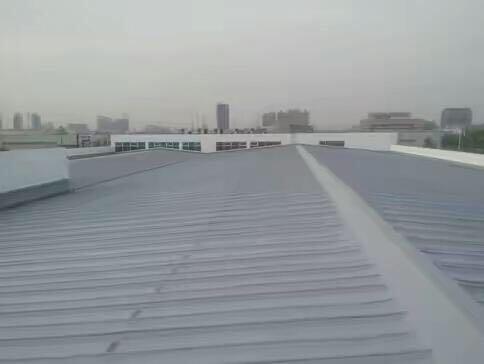聚脲屋面防水