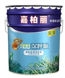 海藻泥全效內墻涂料